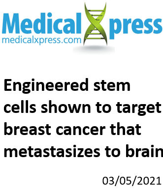 medicalxpress cell-based immune therapies